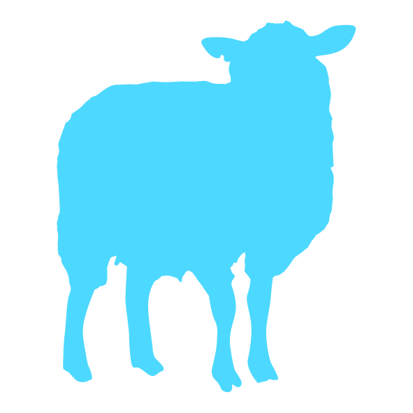 Op dit bedrijf worden schapen gehouden voor vlees, wol etc. of hobbymatig naast een andere productietak.