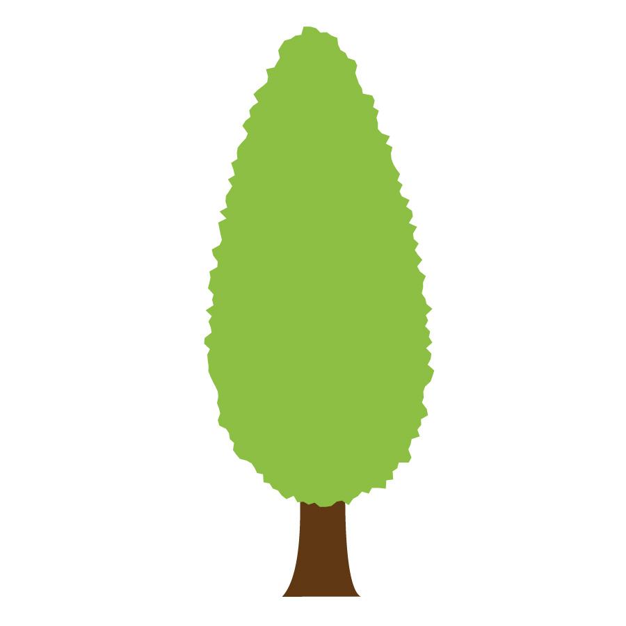 Op dit bedrijf worden bomen geteeld. In Rivierenland zijn dat vooral laan-, bos- en parkbomen. de verschillende soorten zijn te zien op dit bedrijf.