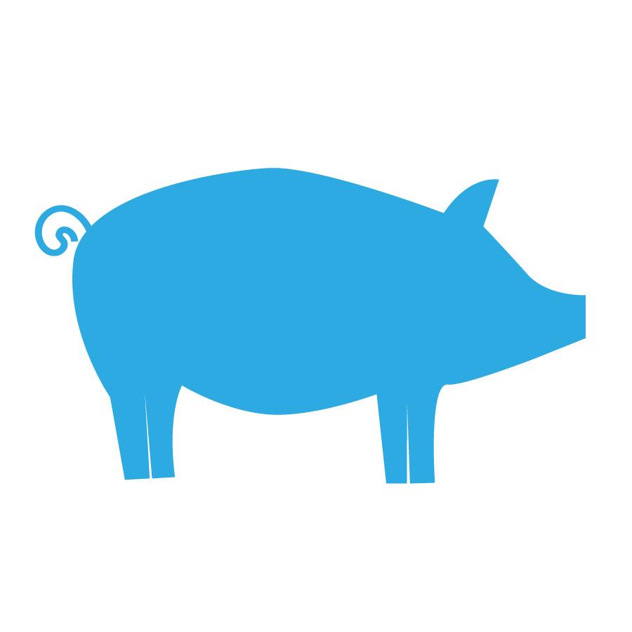Op dit bedrijf worden varkens gehouden voor vleesproductie en/of hobbymatig karakter naast een andere hoofdactiviteit.