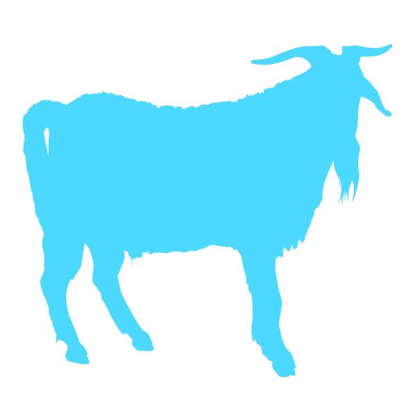 Op dit bedrijf worden geiten gehouden voor melkproductie of hobbymatig naast een andere hoofdactiviteit.