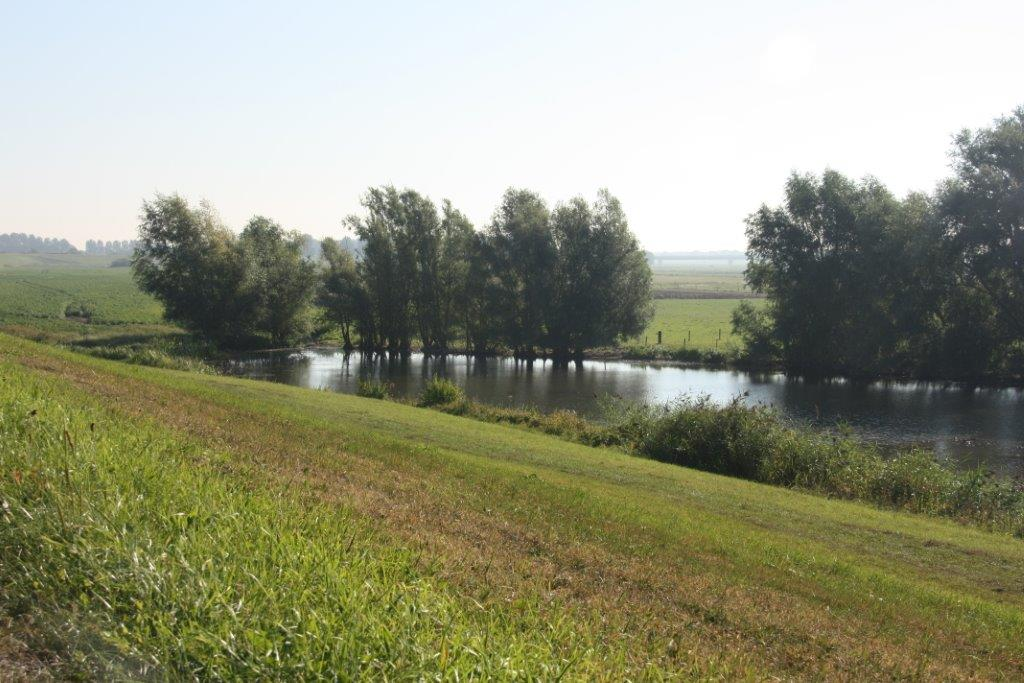 Betuws rivierlandschap aan de overkant vd boerderij & dijk